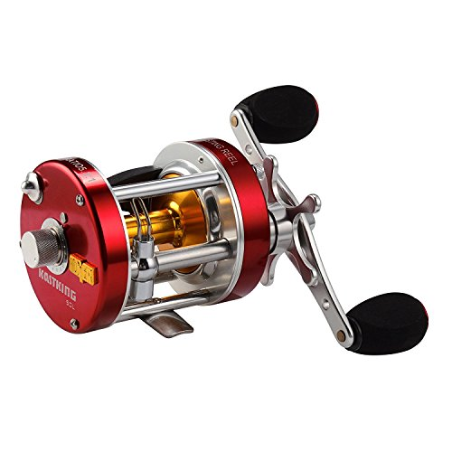 Best Fishing Reels Buying Guide & Reviews 21