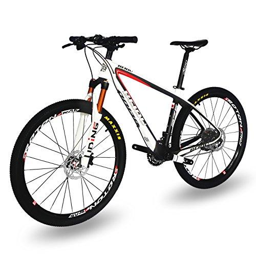 Beiou Carbon Fiber Mountain Bike Review 1