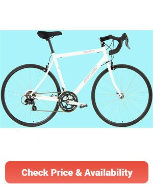 best-road-bikes-under-300-dollars
